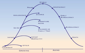 lifecycle graph